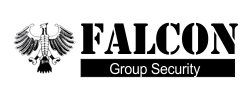 falconsecurity